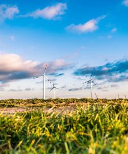 EU-Politiken fit machen für die Umsetzung der Nachhaltigkeitsziele und des Klimaabkommens!