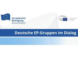 Deutsche EP-Gruppen im Dialog: die deutsche EU-Ratspräsidentschaft aus parlamentarischer Perspektive