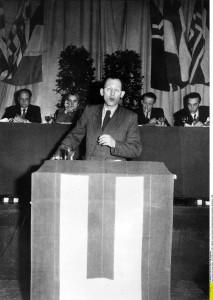 Eugen Kogon, Beruf